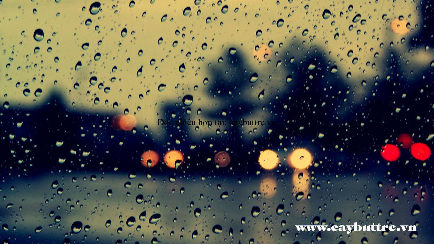 mưa ngâu - HÀ NỘI ....MƯA!