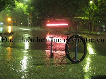muu sinh 1 - MƯU SINH
