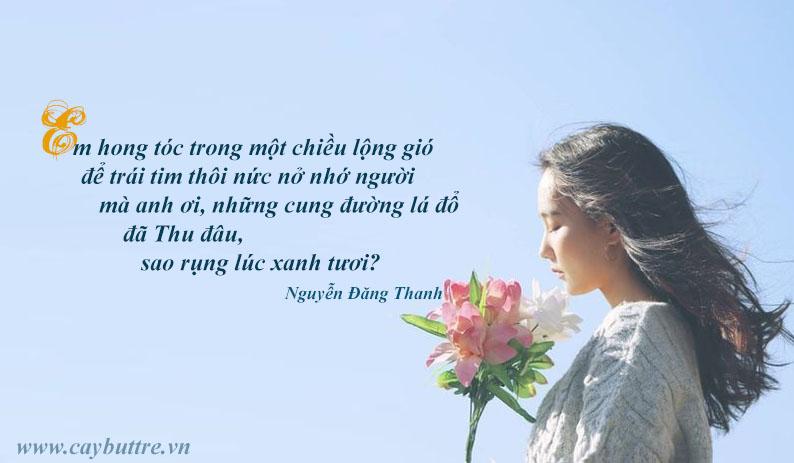 ndt - Em cô đơn vạn lần trước biển - tác giả Nguyễn Đăng Thanh