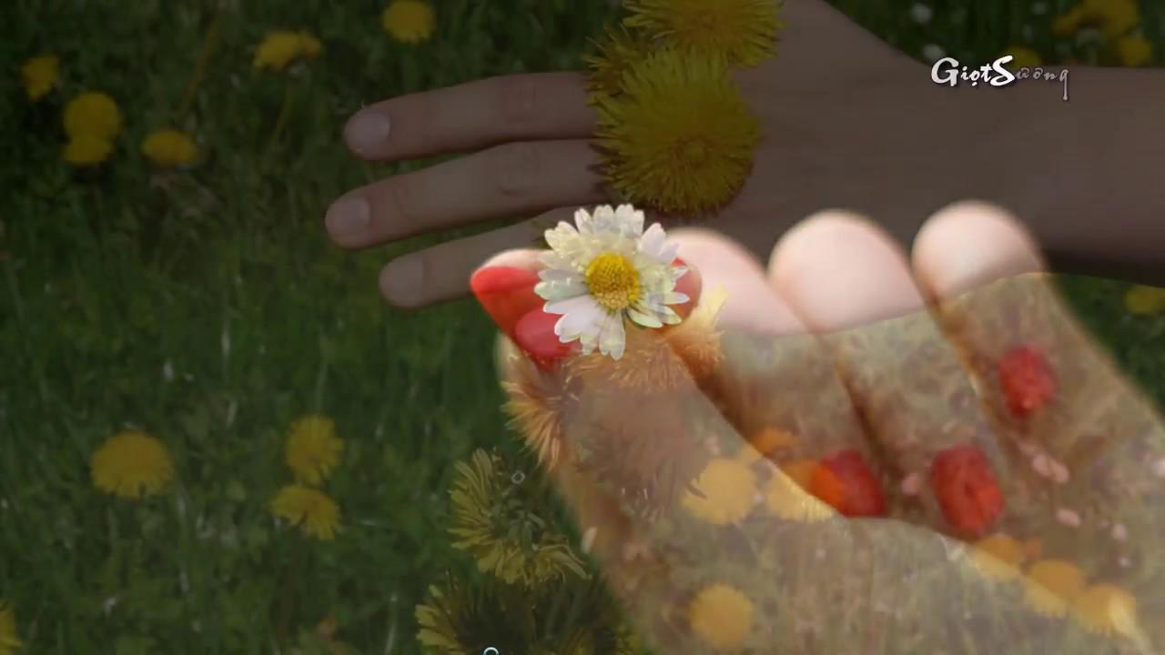 maxresdefault 1 - [Radio 21h] : Người cũ giấu kín một màu hoa - Giọng đọc Thanh Hương