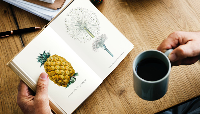 1528188101820 sdfsd - 11 cách để người bận rộn có thời gian đọc sách