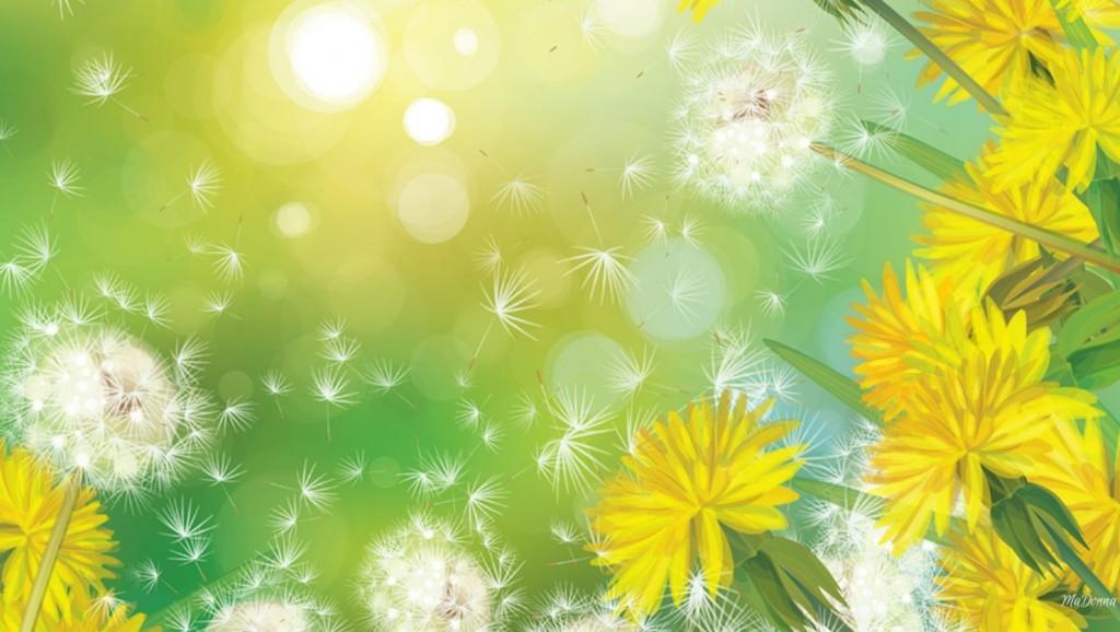 hoa bo cong anh 6 - Gió và hoa - thơ Phong Tâm