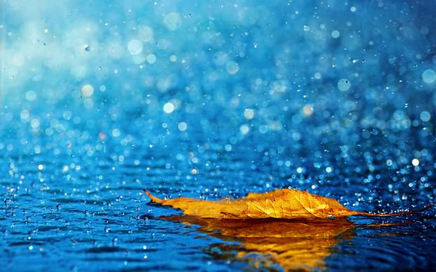 26 - Ba ơi! Trời lại mưa - thơ Kim