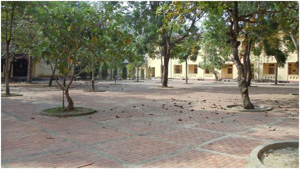 4 - [Cuộc thi] Nhớ mái trường tiểu học năm xưa - Tác giả Phương Thụ