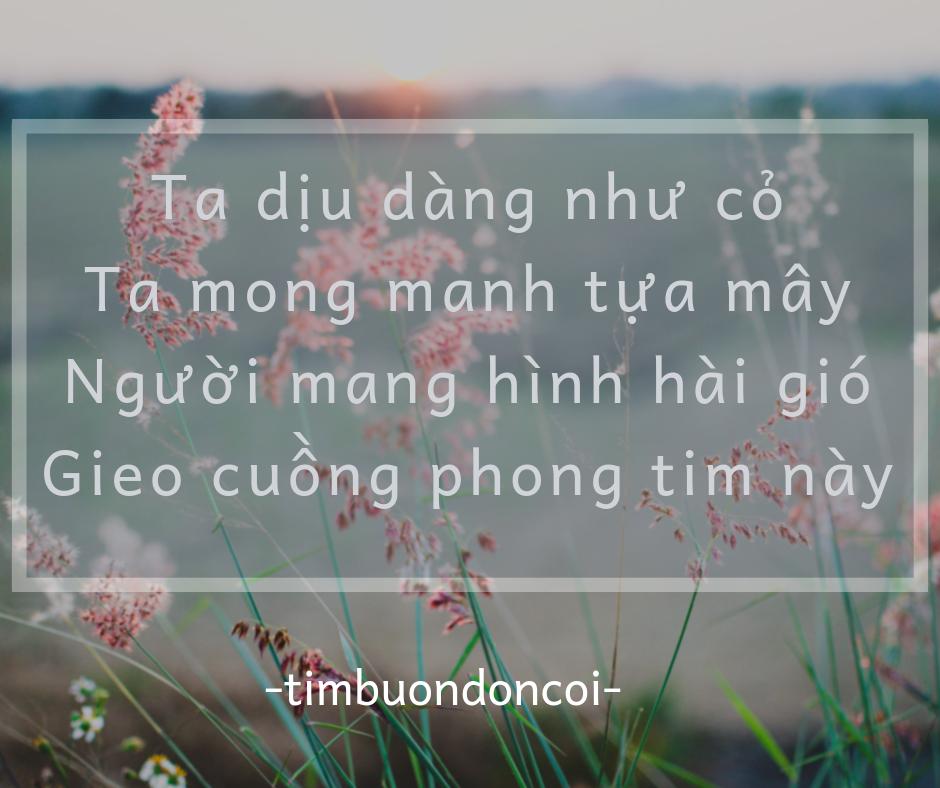 20181209 105606 0000 - Mai người rời thành phố - thơ timbuondoncoi
