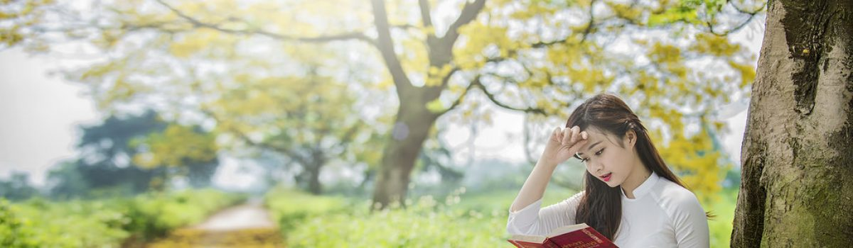 Hạnh phúc vốn dĩ mong manh – Tản văn Hoàng Hồng