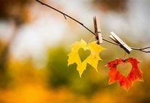 mùa thu kỷ niệm