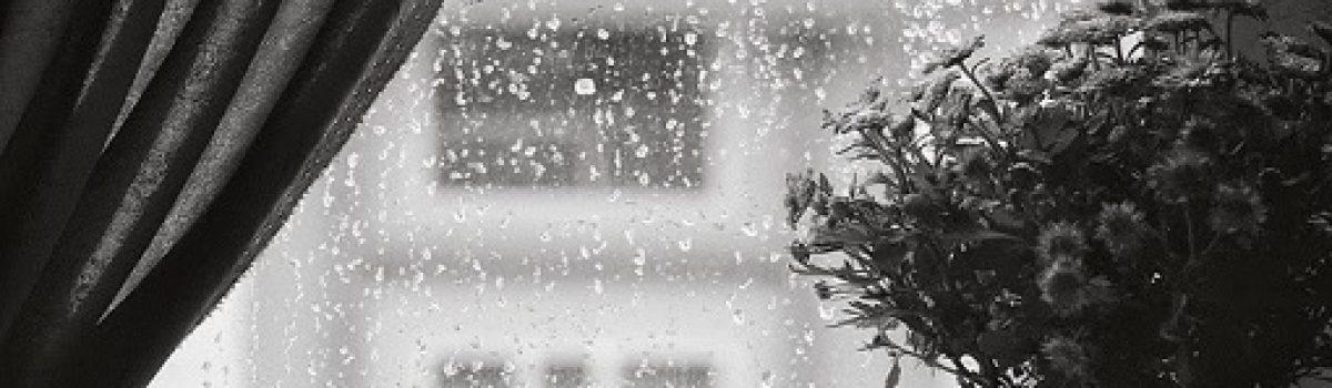 Tiếng mưa (Phần 2) – Tác giả Nguyễn Hòa Bình