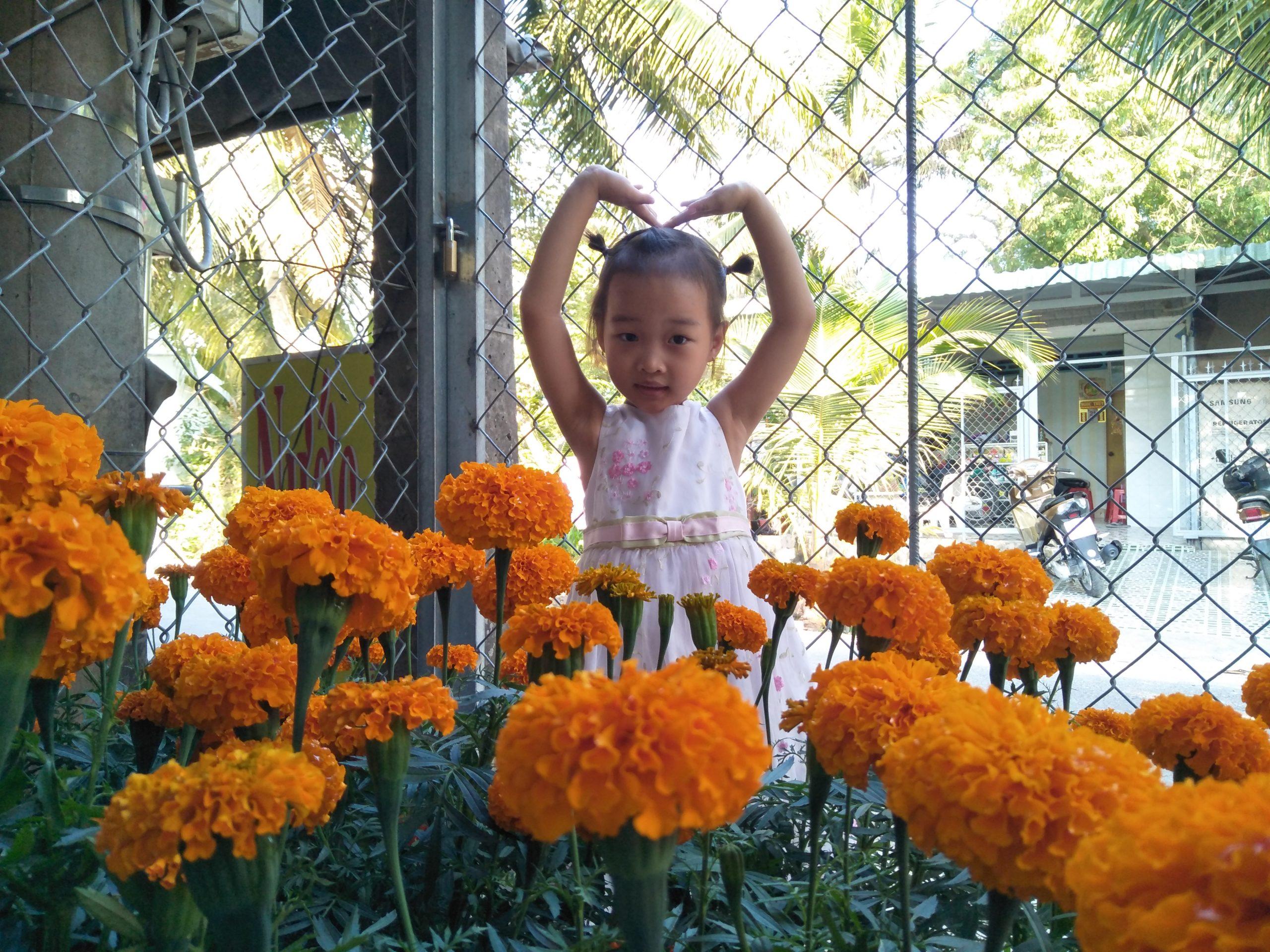 IMG20200122163303 scaled - Chào Xuân - Thơ Hương Tràm