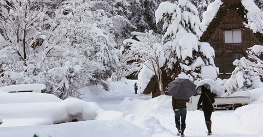 ndong - Hạt tuyết mùa đông - Thơ Tony Bui
