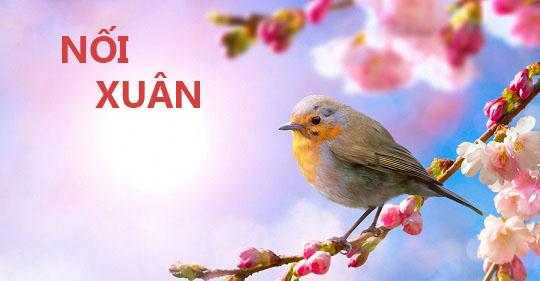Những thông điệp ý nghĩa trong cuộc sống đáng để bạn ghi nhớ mang theo8 4 - Nối xuân - Thơ Trịnh Thanh Hằng
