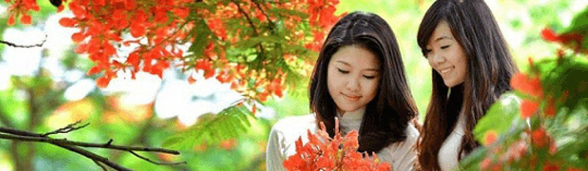 Thư gửi Mẹ – Tản văn Lê Huyền Trang