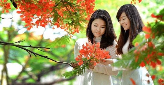 sgdf - Thư gửi Mẹ - Tản văn Lê Huyền Trang