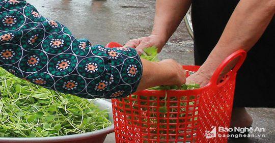 ef85658e2acfc3919ade - Xách giỏ đi chợ - Tản văn Nguyễn Hồng Minh