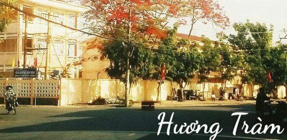 IMG 20200502 195733 e1588953273778 - Chiếc lá cuối cùng - Thơ Hương Tràm