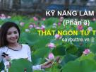 ky nang lam tho phan 3 cach lam tho that ngon tu tuyet 136x102 - [Kỹ năng làm thơ - phần 3]: Cách làm thơ thất ngôn tứ tuyệt
