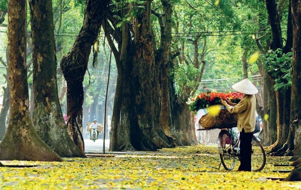 Say lòng nét thu Hà thành   VIETRAVEL 2 - Bâng khuâng với mùa thu - Thơ Cúc Hoa