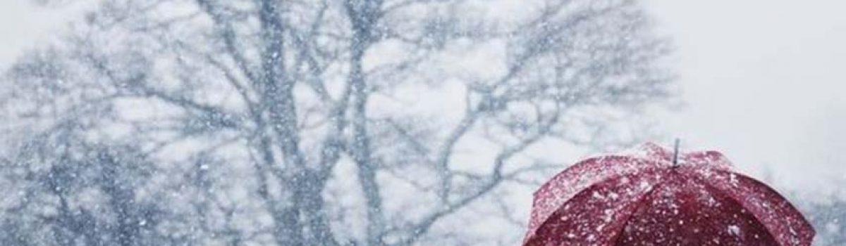 Gió lạnh đầu đông – Thơ Bùi Hiệp