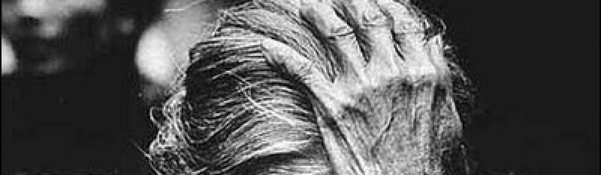 Nước mắt mẹ ngày bão – Thơ Bùi Hiệp