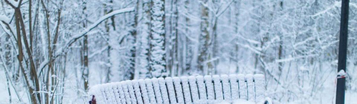 Nỗi nhớ mùa đông – Thơ Hồng Lĩnh