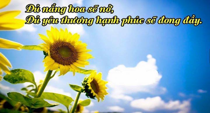 Điều bình dị nhất – Thơ Hương Tràm