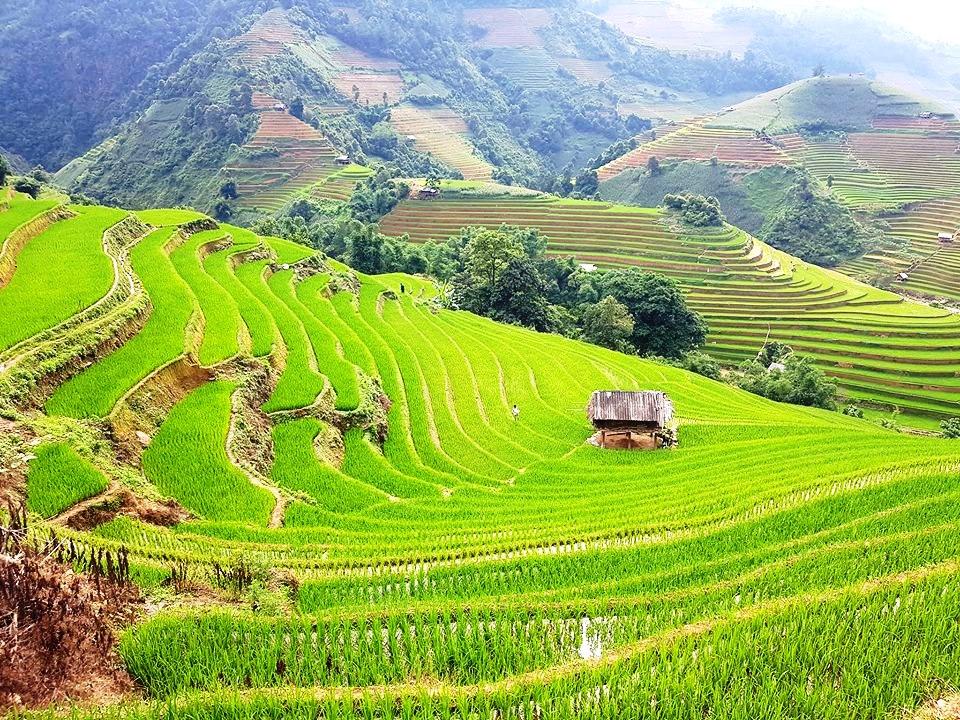 Con của núi – Thơ Hà Nguyễn