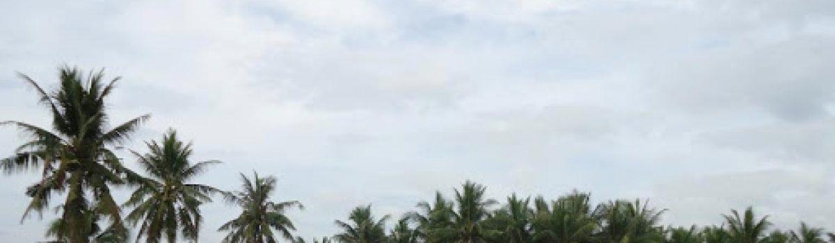 Quê mẹ chiều nay – Thơ Quang Định