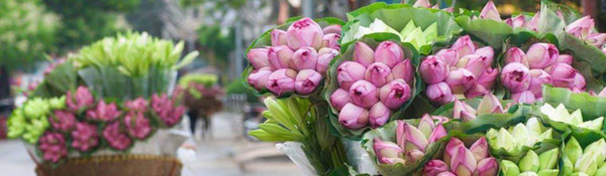 Ta có hẹn cùng mùa hoa tháng Sáu – Thơ Bùi Hiệp
