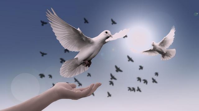 Những ngày tháng bình yên – Tản văn Nguyễn Ngọc Yến